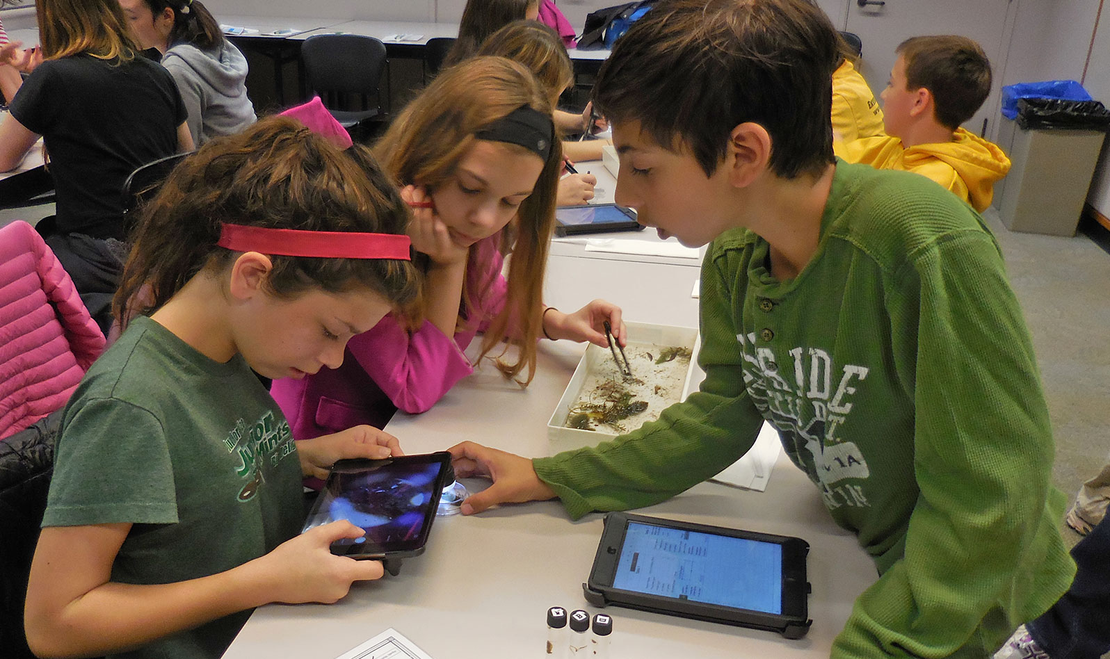 Children viewing microbes through a tablet