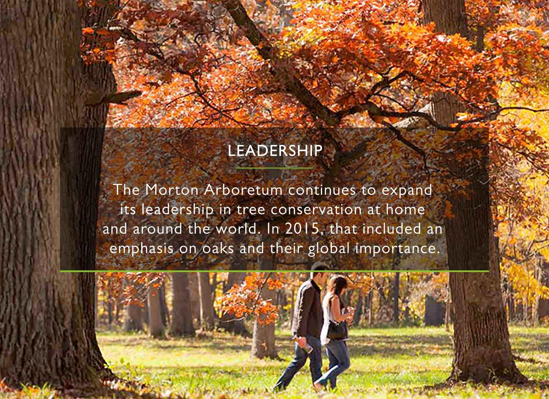 Morton Arboretum - Perennial Report