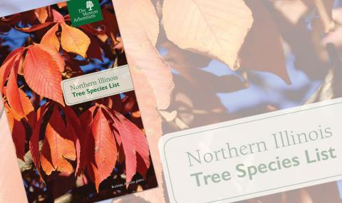 Northern Tree Selecting List